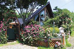 花々に彩られたログハウス