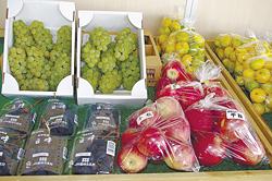 旬の果物や野菜が並ぶ