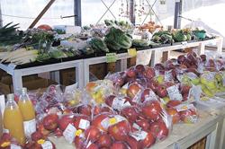 地元産の旬の農産物を幅広く販売